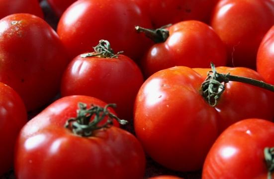 Mmm Tomatoes