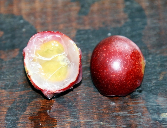 Camu camu - berries for better health