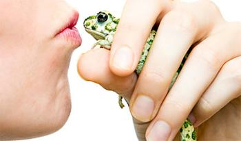 Kiss this frog