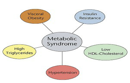 Metabolic syndrome infographic